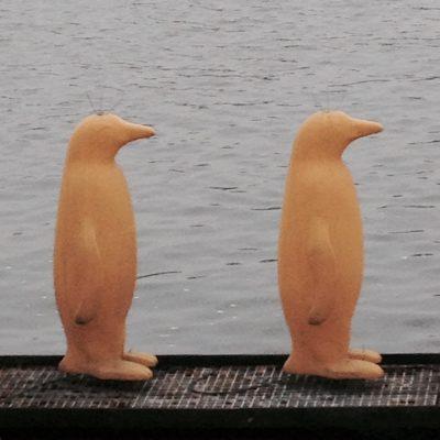 Similar Birds