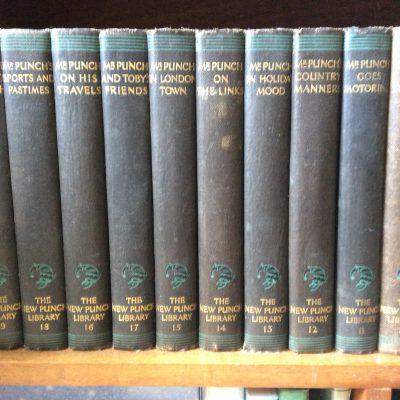 Shelved Books
